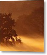 Moorland In The Morning Mist Netherlands Metal Print