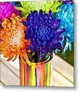 Multicolored Chrysanthemums  Metal Print