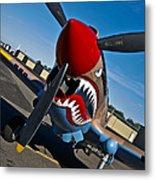 Nose Art On A Curtiss P-40e Warhawk Metal Print