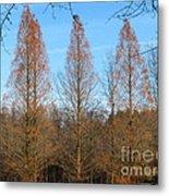 3 Pines Metal Print