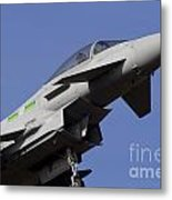 Raf Typhoon Metal Print