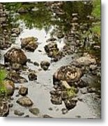Riverbed Metal Print