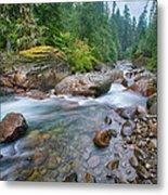 Sauk River Metal Print