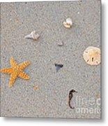 Sea Swag - Natural Metal Print