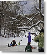 Snowboarding  In Central Park  2011 Metal Print