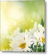 Spring Background Metal Print