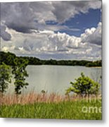 3-summer Time At Moraine View State Park Metal Print