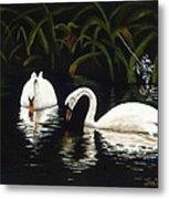 Swans II Metal Print