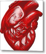 The Human Heart Metal Print by Dennis Potokar