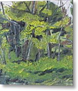 The Wild Forest Metal Print
