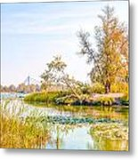 Trees Close To The River Metal Print