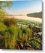 View Of The Dniper River At Morning Metal Print