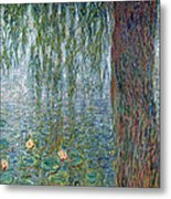 Waterlilies Morning With Weeping Willows Metal Print
