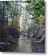 West Fork Oak Creek Metal Print