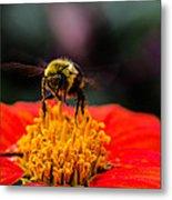 Working Bee Metal Print