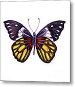 31 Delias Henningia Butterfly Metal Print