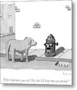 A Fire Hydrant Metal Print