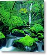 Usa, Oregon, Columbia River Gorge Metal Print