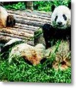 3722-panda -  Watercolor 1 Metal Print