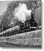 3850 At Castle Hill Metal Print