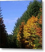 Autumn 9 Metal Print