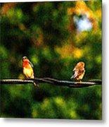 4 Birds Metal Print