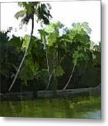 Coconut Trees And Other Plants In A Creek Metal Print