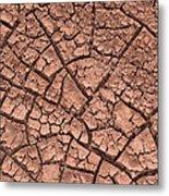 Cracked Dry Clay Metal Print