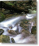 Cranberry Wilderness Metal Print