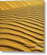 Desert Sand Dune Metal Print by Ezra Zahor