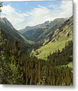 Engineer Pass In Colorado  Metal Print