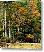 Fall Color Williams River Metal Print by Thomas R Fletcher