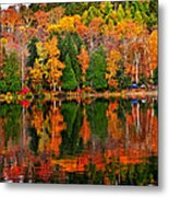 Fall Forest Reflections Metal Print