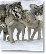 Family Discussion Metal Print