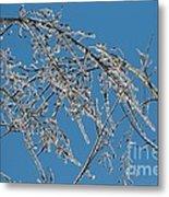 Ice Storm Poplars Metal Print