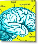Learn About Your Brain Metal Print