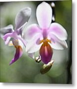 Orchids Dance Metal Print