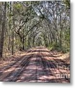 Road To Angel Oak Metal Print