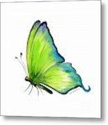 4 Skip Green Butterfly Metal Print