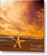 Starfish On The Beach At Sunset Metal Print