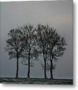 4 Trees In A Winters Landscape Metal Print