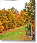 Fall Foliage In New England Metal Print