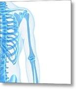 Upper Body Bones, Artwork Metal Print