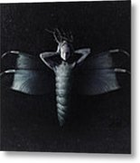 The Moth Metal Print