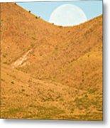 Usa, New Mexico, Bosque Del Apache Metal Print