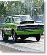 4956 Esta Safety Park 08-24-14 Metal Print