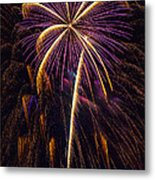 4th July #9 Metal Print