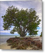 Anne's Beach-1 Metal Print