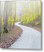 Road Passing Through A Forest Metal Print