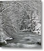 Snow Covered Pine Trees On The Side Of A River In The Winter. Metal Print